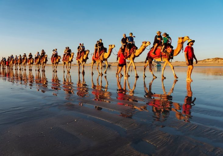 Camel rides are an iconic sight at sunset along Cable Beach Broome. This is winter in the Kimberley, sunshine 28-32 degrees daily